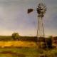 Karoo Spring