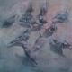 pigeons45x45web